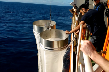 Sampling for microplastics with Bongo-nets.